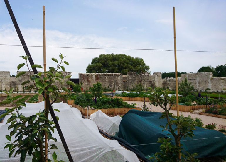 Jardins-potagers-Chambord-(1)