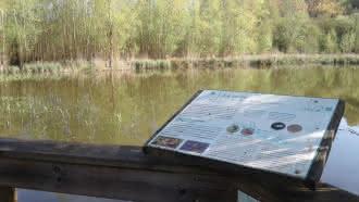 Le Marais des Rinceaux