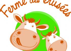 Découverte de l'élevage laitier de la ferme des Erusées - Automne à la ferme à Sargé-sur-Braye