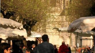 Marché du terroir à Chambord