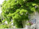 Balade dans Montoire-sur-le Loir