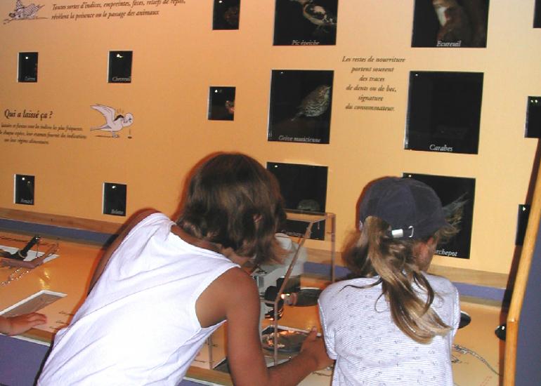 museum-histoire-naturelle-blois©Museum-Histoire-Naturelle