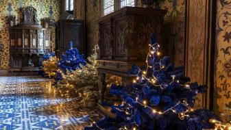 Noel-chateau-royal-de-blois-6-