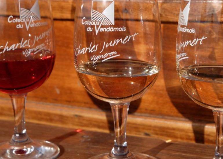 Balade insolite dans les vignes à Villiers-sur-Loir