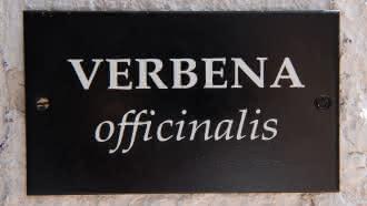 La Barboire Campagne – Gîte Verbena