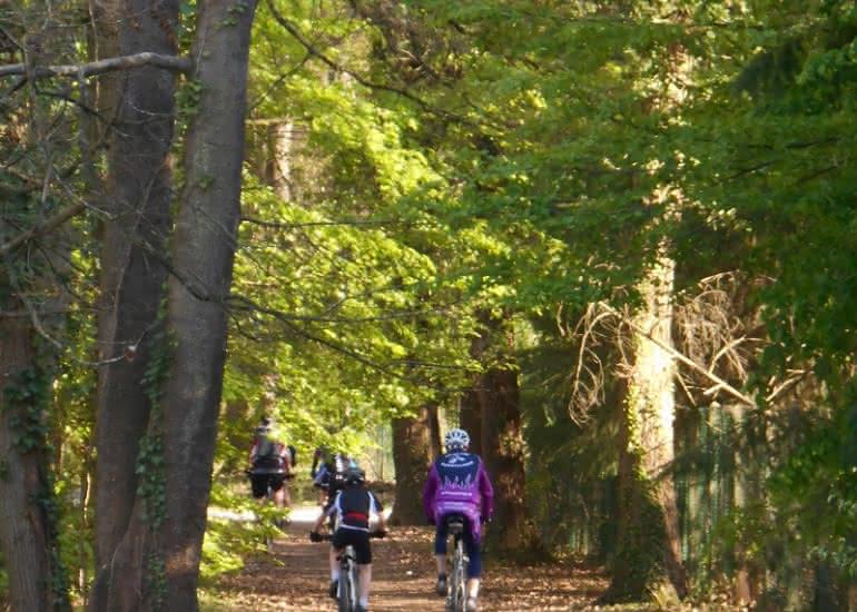 OT Montargis Vélos