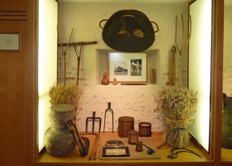 vitrine musée de Sologne