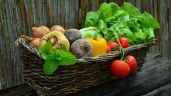 marche-montoire-fruits-legumes-marche