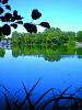 Parcs et jardins - La Pinconnière