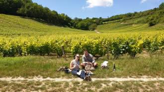 Wine Geometry Tour – wine tours