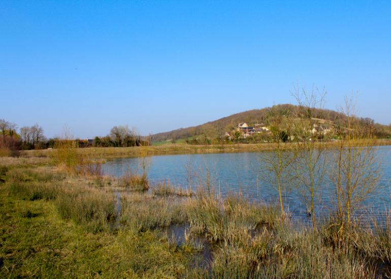Plan-d-eau-communal-souge©Federation-Peche-41-web