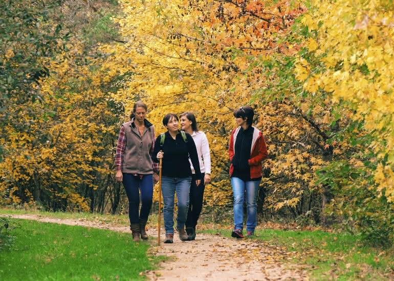 Rando-automne-loir-et-cher