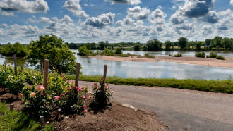 Mon Rendez-vous avec la Loire – Sentier des mariniers avec l'Observatoire Loire