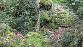 Sortie nature «Qui se cache dans la Réserve ?» à la Réserve Naturelle de Grand Pierre et Vitain