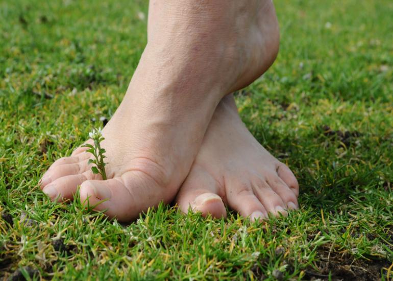 sentier-pieds-nues