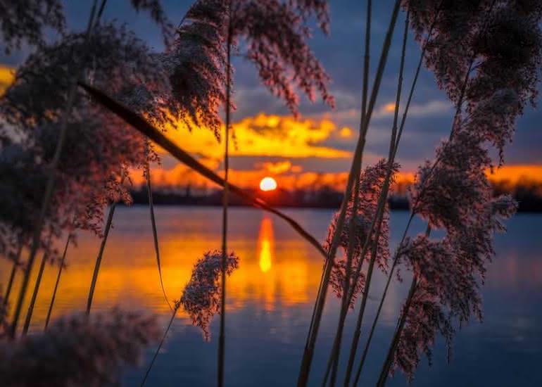 soleil---soir---eau---pixabay
