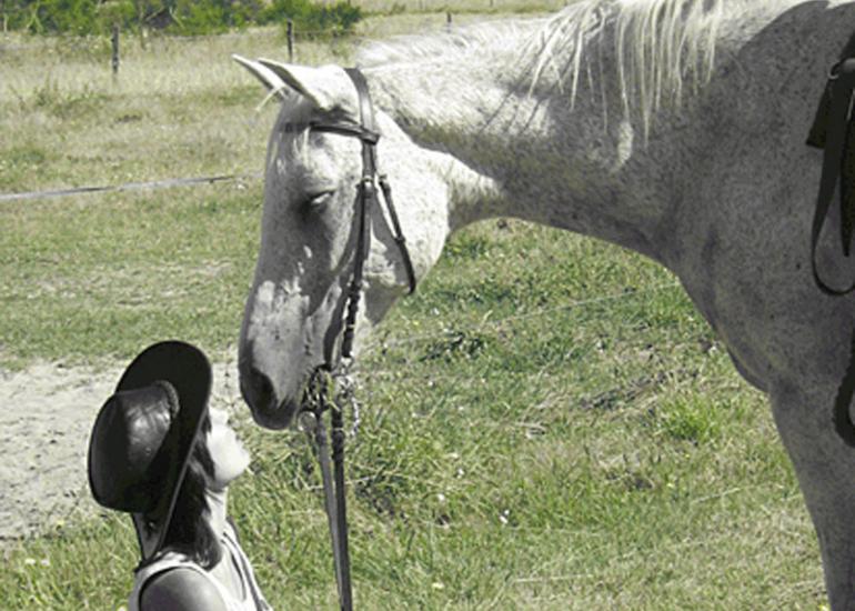 sologne-cheval-centre-equestre-ferme-des-rois-murdesologne