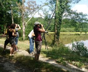 Balades nature en Sologne - Sologne Nature Environnement