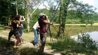 Balades nature en Sologne – Sologne Nature Environnement