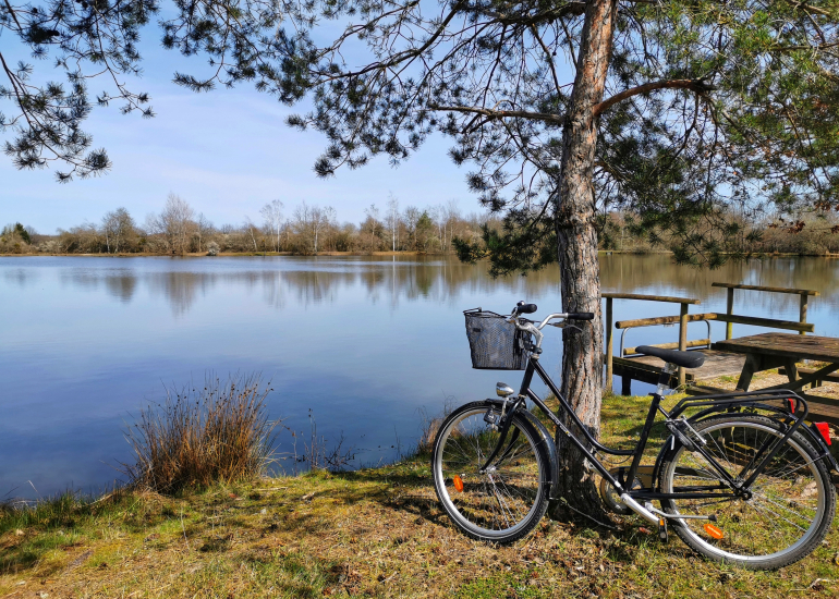 sologne-tourisme-patrimoine naturel-st viatre-le mouet4
