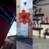 Maison-atelier à Montoire-sur-le Loir
