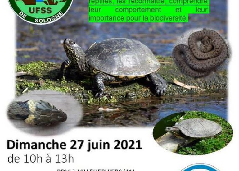 Sortie nature 27 juin Villeherviers