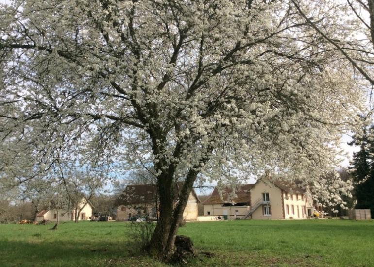 tourisme-sologne-locations de salles-villeherviers-le glandier