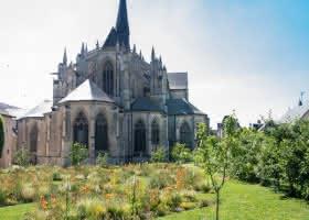 Visite guidée de l'église abbatiale de la Trinité
