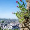 Fleurs-Ville-de-Vendome-Loir-et-Cher