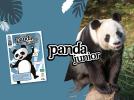 Carnet Panda Junior