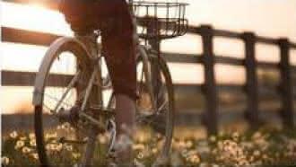 Vélos Loisirs Sologne